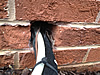 Gap around wires and pipes through hole in a brick wall in a Birmingham home