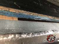 Quarter inch gap between the roof sheathing and the metal rain gutter allowed bats into the attic of a house in Birmingham Alabama