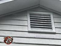 Bat stains on the gable vent and guano on the siding are evidence of a bat problem in the attic of a house in Chattanooga