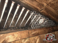 A triangular piece of metal mesh on the lower right corner of a triangular gable vent has openings that are much too big to keep bats out of the attic of a house in Birmingham Alabama
