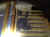 Bats on an attic window vent found at a Pell City, Alabama bat removal job