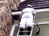 Man on a ladder removing honey bees from a house in East Ridge Tennessee
