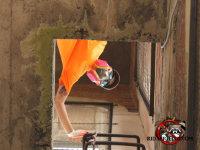 A man wearing a respirator viewed through an access door at a bird control job