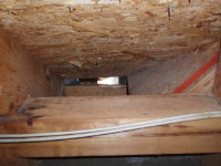 Squirrel hole in an attic in Doraville, Georgia