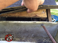 Gap under the shingles of a Macon house allowed flying squirrels to get in