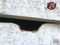 Bowl shaped hole about two inches across in the top edge of a piece of clapboard siding on a house in East Ridge Tennessee