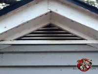 Flying squirrel stains on the wooden slats of a gable vent at a house in Chattanooga Tennessee