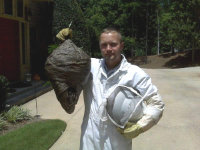 Technician holding hornets' nest in Flowery Branch, Georgia