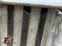 The screen covering a metal foundation vent is sagging about half an inch along the top and allowed mice into a Valdosta Georgia home.