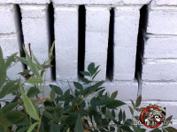 There is a vent built into the foundation with vertical bricks and no screen behind it