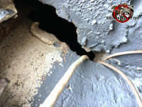 Gap in the mortar of a block foundation with wires passing through it allowed mice into a house in Valdosta Georgia