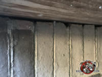 Irregular gap between the foundation bricks and the plywood bottom of the porch allowed mice into a house in Columbus Georgia.