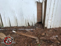 Hole in the lower right corner of the weathered plywood door allowed mice into the crawl space of a house in Hoover Alabama
