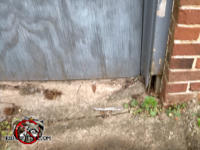 Three inch high by half inch wide gap at the bottom of a door frame needs to be closed to exclude mice from a crawl space in Macon Georgia.