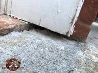 Three eighth inch gap between the garage door trim and the concrete pavement allowed mice to get into the garage in Signal Mountain Tennessee