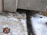 Mouse gap under the trim at the end of an expansion joint in the concrete at a house in Jasper Tennessee