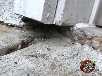 Gap between the bottom of the wooden trim and the cement pavement allowed mice into a house in Albany Georgia