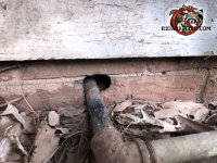 There is space around a pipe where it passes through the exterior brick foundation at ground level