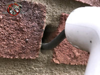Gap between an electrical conduit and the exterior brick wall allowed mice to get into a house in Macon Georgia