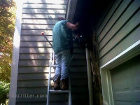 A man on a ladder setting a raccoon trap in a soffit of a house in Birmingham, Alabama