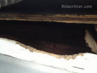 Raccoon hole in the edge of a roof at a Birmingham raccoon removal job