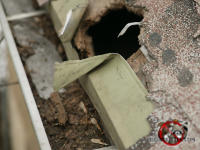 Softball sized raccoon hole through the wooden roof fascia and the shingles and into the attic of a house in Columbus Georgia.