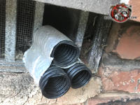 Three pieces of plastic split loom passed through the missing slats of a foundation vent at a house in Chattanooga created a gap that allowed Norway rats into the house