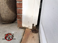 There is a gap between the garage door and the frame through which rats got into the garage of a home in Roswell Georgia