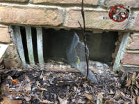 All but three of the vertical slats of a foundation vent on a house in Anniston Alabama are missing which allowed rats to get into the crawl space