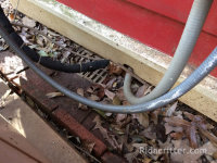 Rat entry around air-conditioning lines at a house in Birmingham, AL