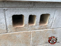Three openings in a cinder block that was being used as a foundation vent allowed Norway rats to get into a house in Yatesville Georgia.
