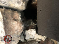 Small gap between the roof fascia and the stone wall that allowed roof rats into a stone house in Birmingham Alabama