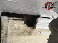 Gap in the exterior trim of a house in Macon Georgia with smudge marks next to it from where the rats were going in and out
