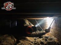 Man on his back in a two foot high crawl space using a sealant to keep rats out of the crawl space of a house in Macon Georgia