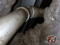 Norway rats left greasy stains on a PVC pipe where it passes through a concrete wall in the crawl space under a house in Macon Georgia