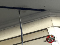 Rat smudge lines next to cable TV lines passing between the gap in a soffit panel