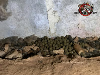 Small pile of dry dog food that rats were hoarding in a crawl space