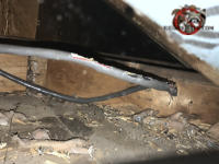 Roof rats gnawed the outer sheathing off about three inches of non metallic sheathed electrical cable in the attic of a house in Harrison Tennessee
