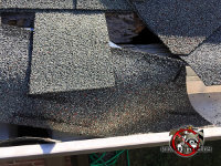 Roof rat hole behind the skewed shingles on a house in Birmingham Alabama