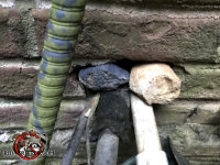 The homeowner stuffed some rocks into a hole in a brick wall where pipes pass through to try to keep the rats out