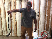 Man holding a snake by the tail after catching it so it can be removed from the garage of a house in Columbus Georgia.