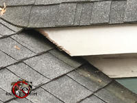 Squirrels gnawed the wooden roof trim at a house in Red Bank Tennessee