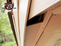 Two inch gap in the soffit allowed squirrels to get into a house in East Ridge Tennessee