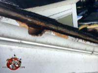 Bathtub shaped squirrel hole gnawed through the wooden roof fascia and into the attic of a house in Americus Georgia