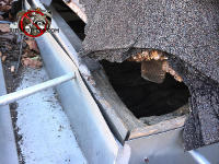 Squirrels gnawed a hole though the shingles and wood on the corner of the roof of a house in Homewood Alabama