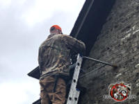 Man on a ladder sealing squirrels out of the attic of a brick house in Hoover Alabama.