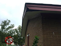 Soffit of a house in Eastman Georgia ready to fall off because of squirrel gnawing