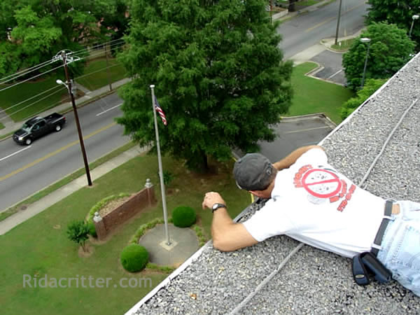 Man laying on a flat roof with his head over the edge doing bat control work in Marietta