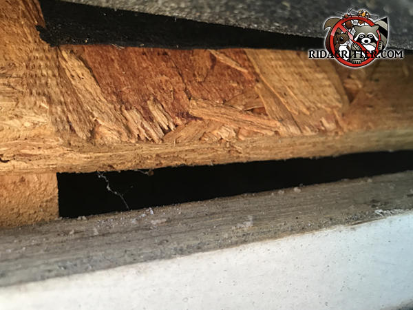 Gap of about half an inch between the roof sheathing and the fascia board