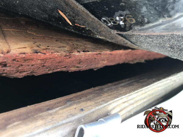 Gap of about three quarters of an inch between the sheathing and fascia of a roof in College Park Georgia